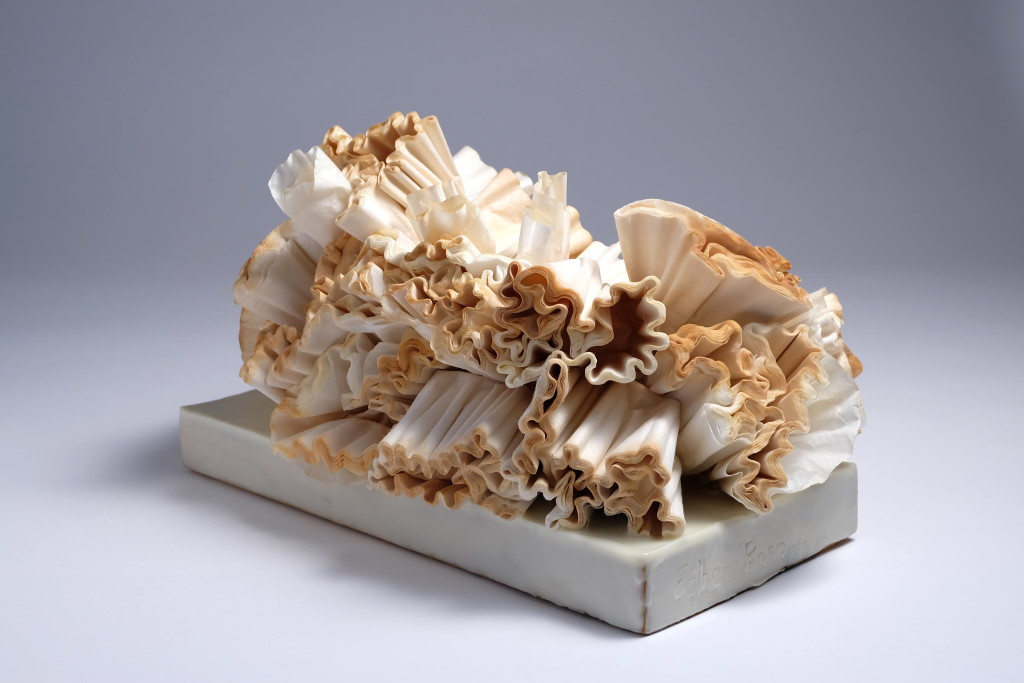 Esther_Rosa_White_Coral_II2 (1)