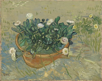 "Obj. No. 2014.207 Vincent van Gogh (Dutch, 1853–1890) Daisies, Arles, 1888 Oil on canvas 13""H × 16½""W 33.02 cm × 41.91 cm Image must be credited with the following collection and photo credit lines: Virginia Museum of Fine Arts, Richmond. Collection of Mr. and Mrs. Paul Mellon Photo: Travis Fullerton     © Virginia Museum of Fine Arts"